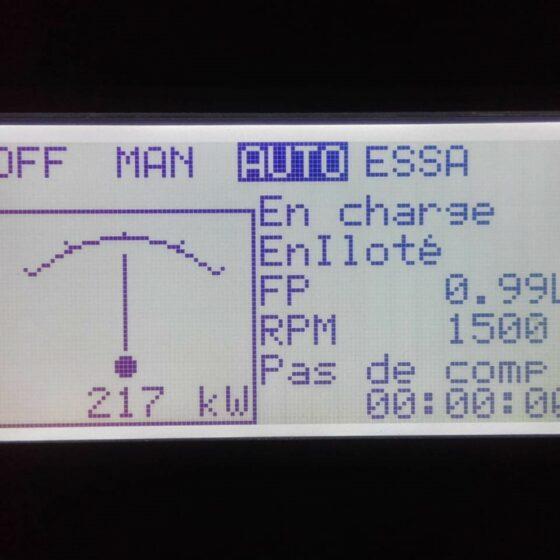 Groupe électrogène de secours l Flipo Richir