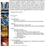 Mécanicien Diéséliste Groupes Electrogènes Maintenance